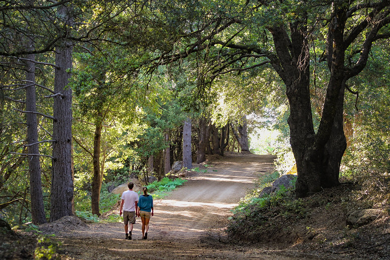 Explore Outdoor Kelseyville: Photo by Nathan Dehart
