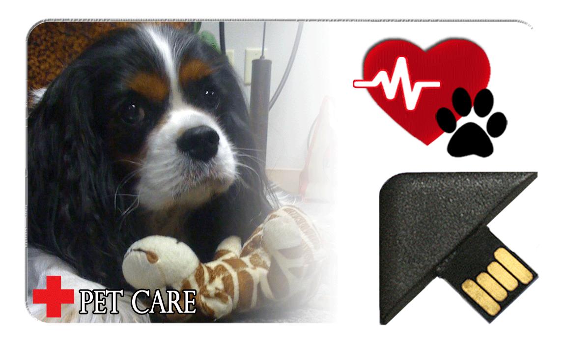 IDME Animal Healthcare Card