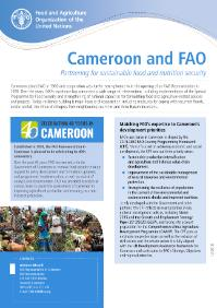 Cameroon and FAO