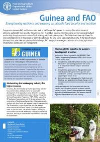 Guinea and FAO