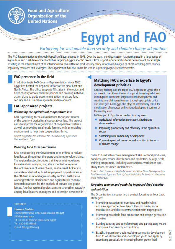 Egypt & FAO