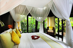 Yellow Orchid Bed