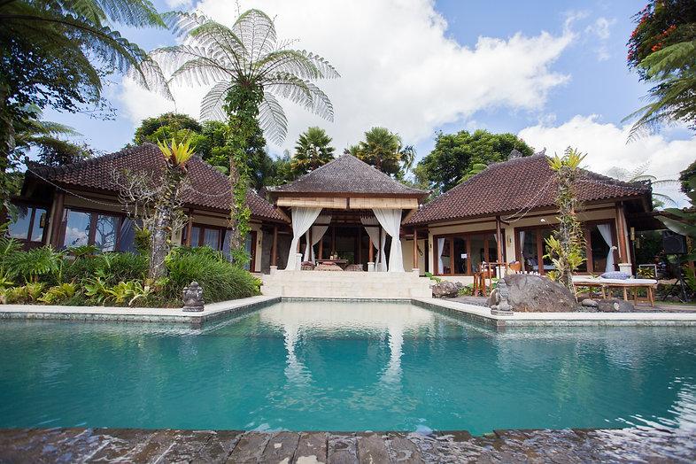 Pool & Guests