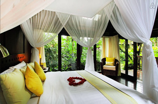 Yellow Orchid Bed.jpg