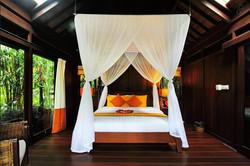 Orange Orchid Bed