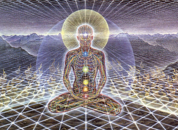 Human Energetic Fields