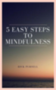 5 Easy Steps to Mindfulness Cover.jpg