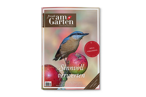 Ausgabe September & Oktober (5/2020)