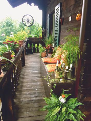 Holen Sie den Süden auf Ihren Balkon