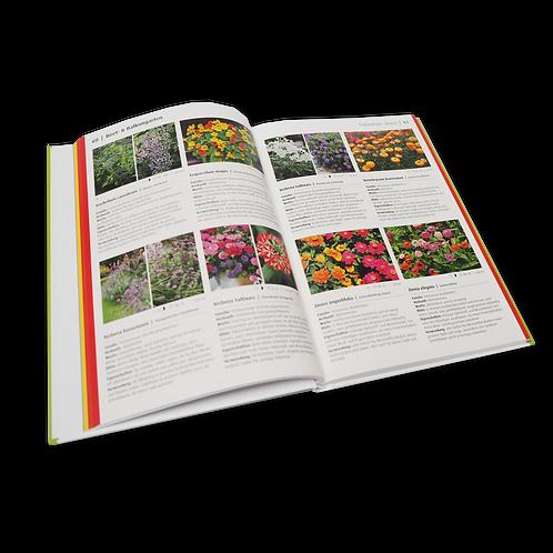 Buch « Topfgarten Saison- und Zimmerpflanzen»