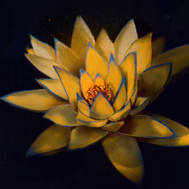 Golden lotus of jing.jpg