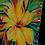 Thumbnail: Yelllow Flower