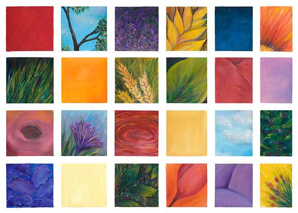 Series_of_Flowers