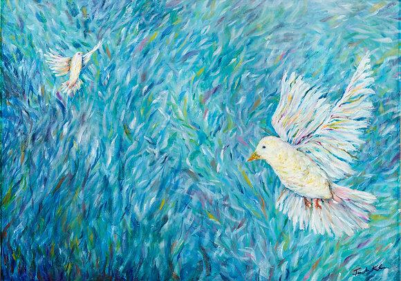 Doves in Jerusalem