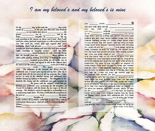 Standard Ketuba - Hebrew & English