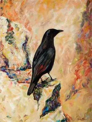 Raven in Jerusalem