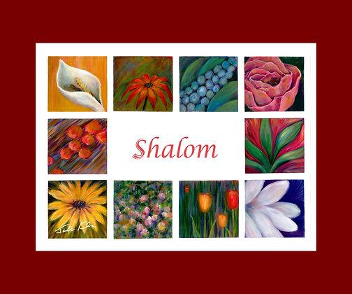 Shalom 9