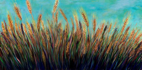 Field of Wheat in the Galilee