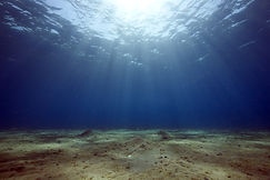 Aquatic habitat mapping, bottom typing, sediment classification