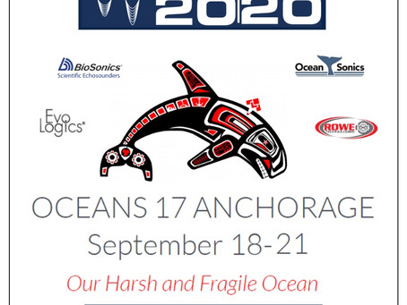 SUBSEA 20/20 at OCEANS 17 Anchorage