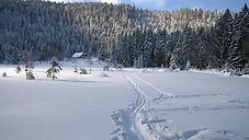 Schneeschuhwandern Bayerischer Wald / Bayern, Schneeschuhwandern Bayern, Schneeschuhwandern Großer Arber, Schneeschuhwandern Bayerisch Eisenstein