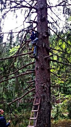 Outdoor Bayern / Bayerischer Wald