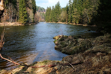 Aktiv Urlaub Bayerischer Wald