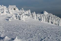 Schneeschuhwandern Bayern