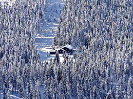 Schneeschuhwandern im Bayerischen Wald rund um den Großen Arber und Bayerisch Eisenstein. Erleben Sie bei einer Schneeschuhwanderung eine der schönsten Regionen in Bayern