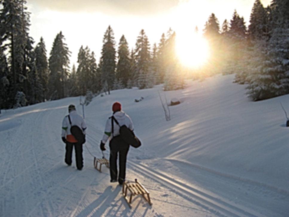 Rodeln Bayerischer Wald, Rodeln Bayern, Rodeln Bayerisch Eisenstein, Rodeln Bodenmais, Rodeln Großer Arber, Snowtubing Bayerischer Wald
