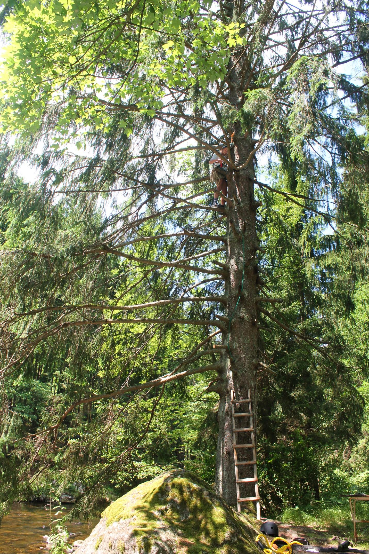 Outdoor Bayerischer Wald