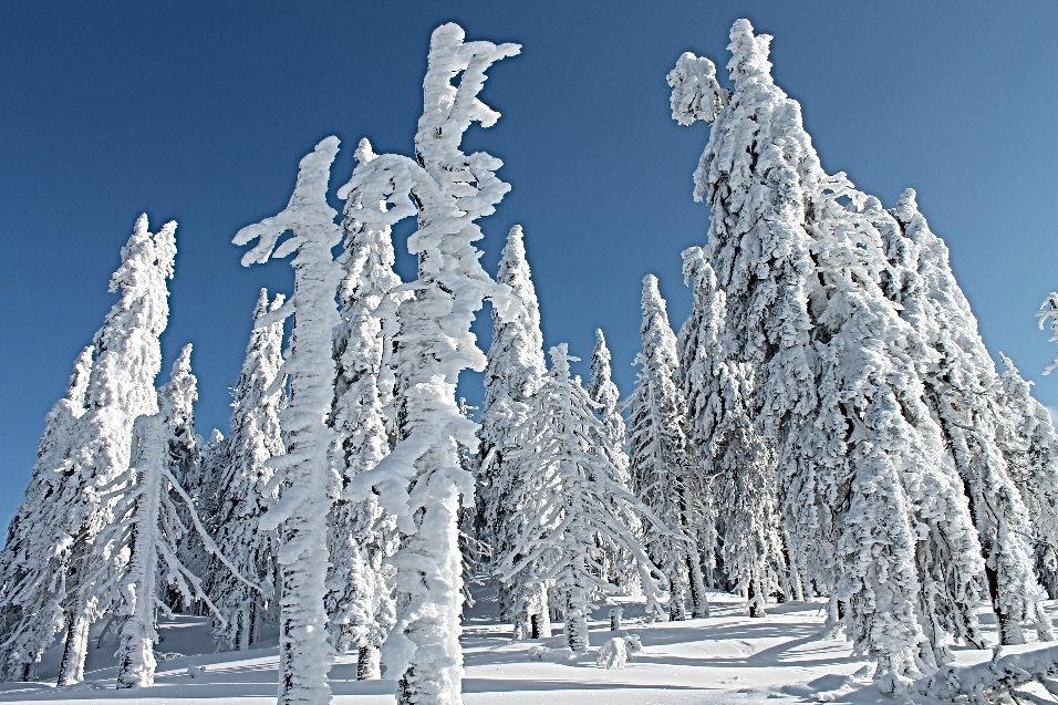 Schneeschuhwandern Bayern, Schneeschuhwandern Bayerischer Wald, Iglu Übernachtung Bayern, Igludorf Bayerisch Eisentein