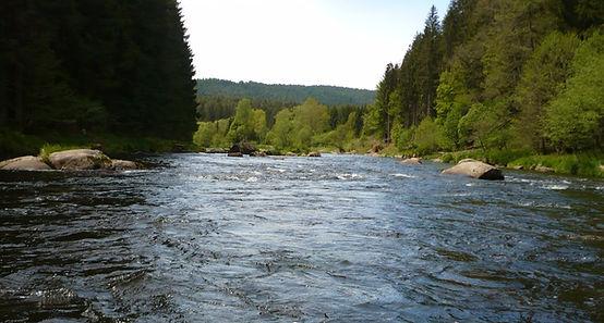 Kanutour Schwarzer Regen, Kanu Regen, Kanutouren Bayerischer Wald, Kanutour Zwiesel, Bärenloch, Kanufahren Regen, Schwarzer Regen, Klein Kanada, Kanu Bayerischer Wald