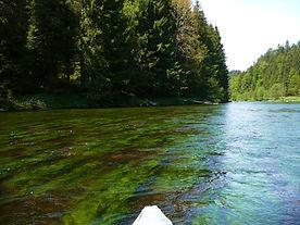 Kanuverleih Bayerischer Wald