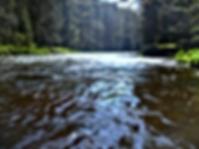 Kanutouren Bayerischer Wald