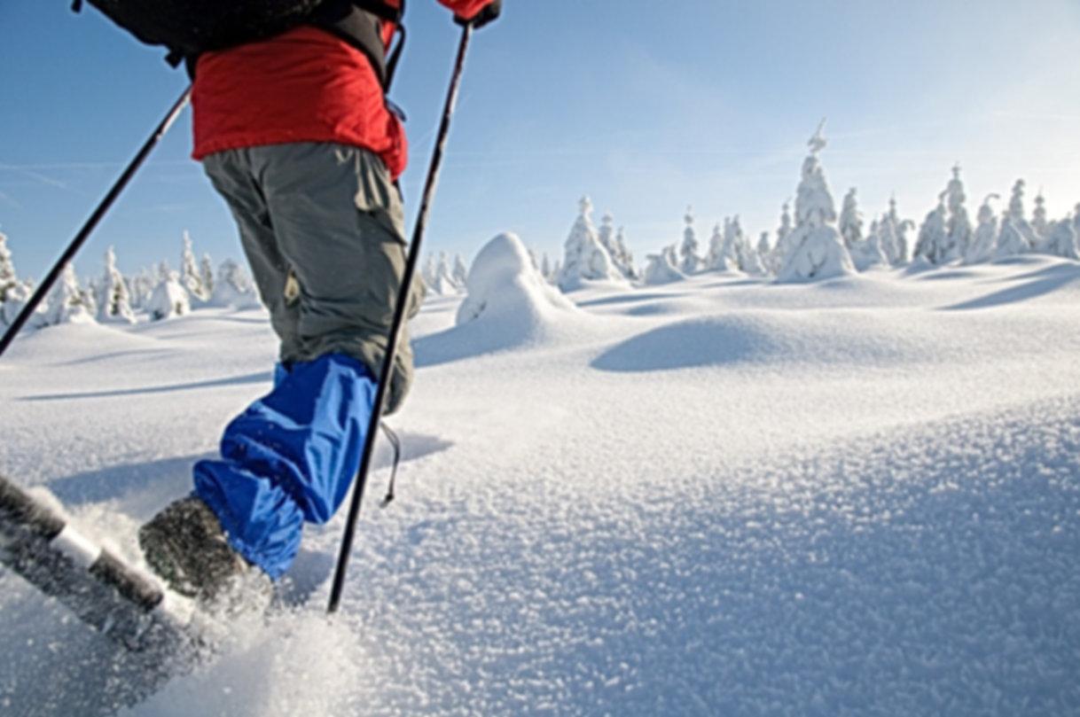 Schneeschuhwandern Bayerischer Wald, Schneeschuhwandern Bayern, Schneeschuhwandern