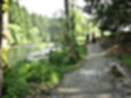 Segway Bayerischer Wald