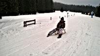 Rodeln Bayerischer Wald, Rodeln Bayern, Rodeln Großer Arber, Rodeln Bayerisch Eisenstein, Rodeln Bodenmais, Snowtubing Bayerischer Wald