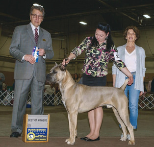 Turnout AKC Win Pic First Show.jpg