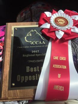 Winna's award from CCAA Nationals Weekend