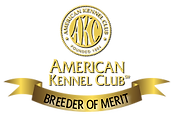 AK Breeder of Merit