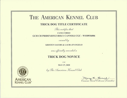 Winna AKC Trick Dog Title.jpg