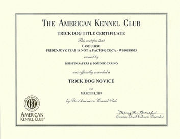 Turnout TKN Certificate.jpg