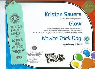 DMWYD Trick Dog Novice Glow.jpg