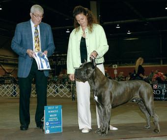 Thorin Winners Dog