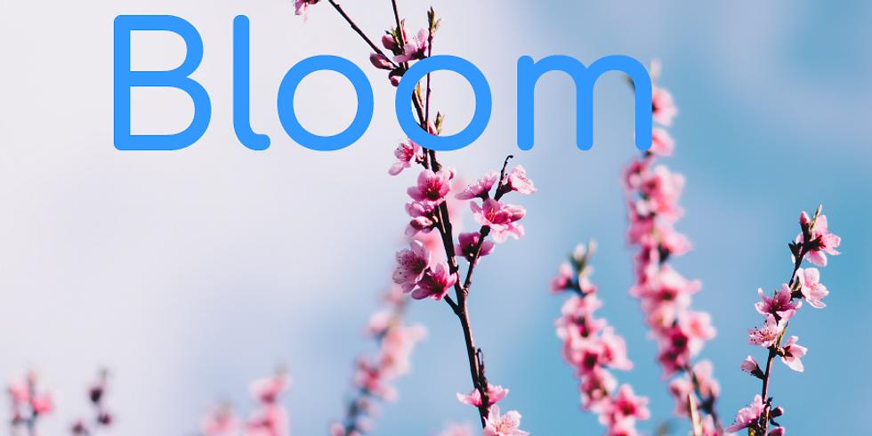 Webinaire Bloom - Etre un facilitateur d'intelligence collective inspirante ?