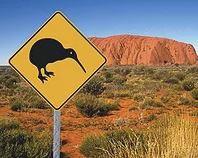 Profiling Oz Kiwis