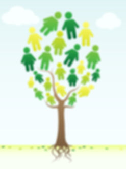 Family-history-tree.jpg