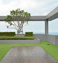 Azotea verde, Ecosistema Vertical Ecoyaab Jardin Vertical Muro Verde Fachada Vegetal Pared con Plantas Vertical Ecoyaab