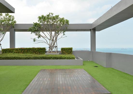 Groene Rooftop